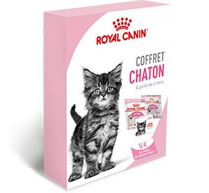 coffret chaton elearning