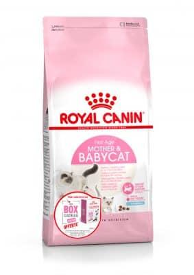 https://www.wikichat.fr/wp-content/uploads/sites/2/babycat-2kg-box-cadeau-283x400.jpg