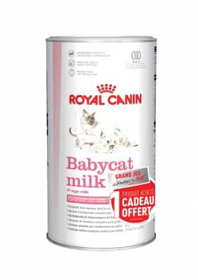 Babycat_milk