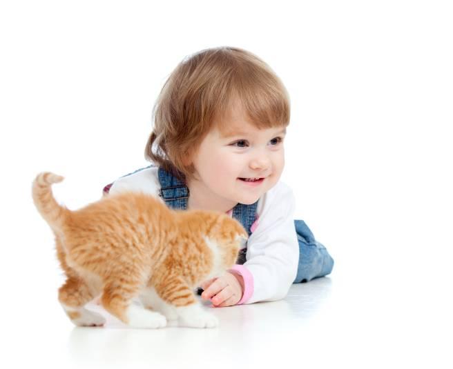 Chaton et enfant