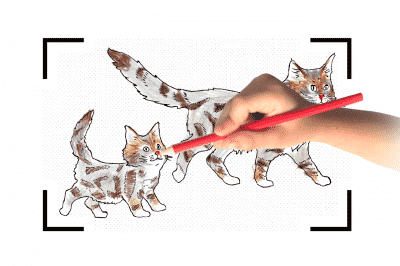 https://www.wikichat.fr/wp-content/uploads/sites/2/step1_cahier-dessin-chat-royalcanin-400x266.png